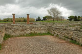 Ruins of ancient city Paestum — 图库照片
