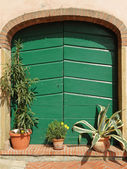 Green double storage door — Stock Photo