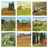 Houses in wonderful tuscan landscape — Stock Photo
