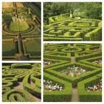 collage jardín verde — Foto de Stock   #49651045