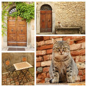 Tuscan lifestyle — Stock Photo