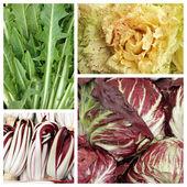 Vegetable pattern — Stock Photo