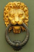 Old fashion golden lion's head knocker — Stock Photo