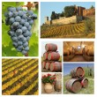 Wine tradition collage — Stock Photo #50692945