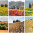 Wonderful Tuscan landscape — Stock Photo #50998399