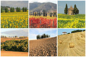 Wonderful Tuscan landscape — Stock Photo