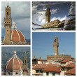 Collage with images of Palazzo Vecchio — Stock Photo #51117357