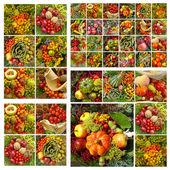 Fall fruits pattern — Stock Photo