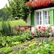 Farmhouse with garden — Stockfoto