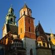 Wawel Cathedral - part of the Wawel castle in Cracow, Poland — Stock Photo
