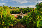 Vineyard and the town of Saint Julien in region Beaujolais, France — Stock Photo