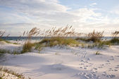 Footprints in the Beach Dunes at Sunset — Stock Photo
