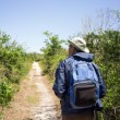 MHiking on Path in national park — Stock Photo #25276099