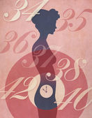 Woman's Biological Clock Illustration — Stock Photo