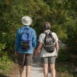 Mature couple holding hands and hiking on nature trail — Stock Photo