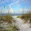 New Day Dawns at White Sands Beach — Stock Photo