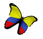 Colombian flag butterfly flying, isolated on white background — Stock Photo