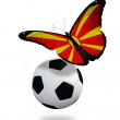 Concept - butterfly with Macedoniflag flying near ball, l — Stockfoto #12134098