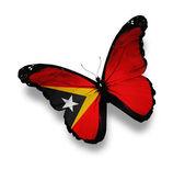 East timor flaga motyl, na białym tle — Zdjęcie stockowe