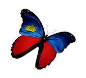 Mariposa bandera liechtenstein volando, aislado sobre fondo blanco — Foto de Stock