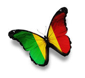 Mali flag butterfly, isolated on white — Stock Photo