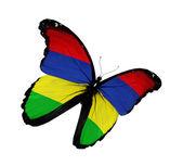 Mauritius flagga fjäril flyger, isolerade på vit bakgrund — Stockfoto