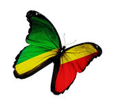 Republic of the Congo flag butterfly flying, isolated on white b — Stock fotografie