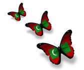 Three Maldivian flag butterflies, isolated on white — Stock Photo