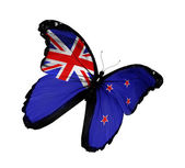 New Zealand flag butterfly flying, isolated on white background — Stockfoto