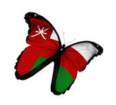 Omani flag butterfly flying, isolated on white background — Stock Photo