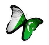 Pakistanische flagge schmetterling fliegen, isolierten auf weißen hintergrund — Stockfoto
