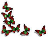 бабочки мальдивского флага, изолированные на белом фоне — Стоковое фото