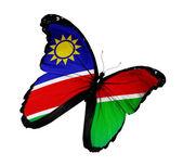 Mariposa de bandera namibia volando, aislado sobre fondo blanco — Foto de Stock