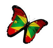 Grenada flag butterfly flying, isolated on white background — Zdjęcie stockowe
