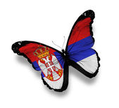 Republic of Serbia flag butterfly, isolated on white — Stock Photo