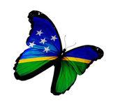 Borboleta voando, isolado no branco backgro da bandeira das ilhas salomão — Foto Stock