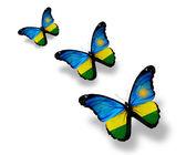 Drie rwanda vlag vlinders, geïsoleerd op wit — Stockfoto