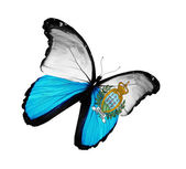 San Marino flag butterfly flying, isolated on white background — Stock Photo