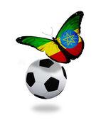 концепция - бабочка с эфиопии, флаг возле мяча, лик — Стоковое фото
