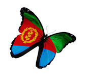 Eritrea flag butterfly flying, isolated on white background — Stock Photo