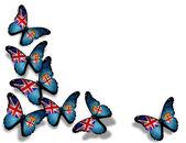 Motyle flaga fidżi, na białym tle — Zdjęcie stockowe
