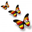 Three Uganda flag butterflies, isolated on white — Stock Photo #13436801
