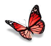 红色蝴蝶,在白色背景上孤立 — 图库照片