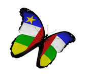 Central African Republic flag butterfly flying, isolated on whit — Stock Photo