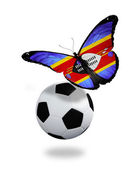 Concept - butterfly with Swaziland flag flying near the ball, li — Stock Photo