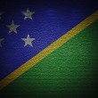 Solomon Islands flag wall, abstract grunge background — Stock Photo #15472063