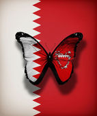 Bahrain flag butterfly, isolated on flag background — Stok fotoğraf