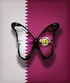 Qatar flag butterfly with , isolated on flag background — Stock Photo