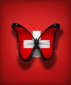Switzerland flag butterfly, isolated on flag background — Stock Photo