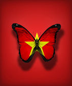 Vietnam flag butterfly, isolated on flag background — Stock Photo